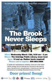 The Brook Never Sleeps