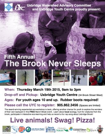 Brook Never Sleeps - 2015